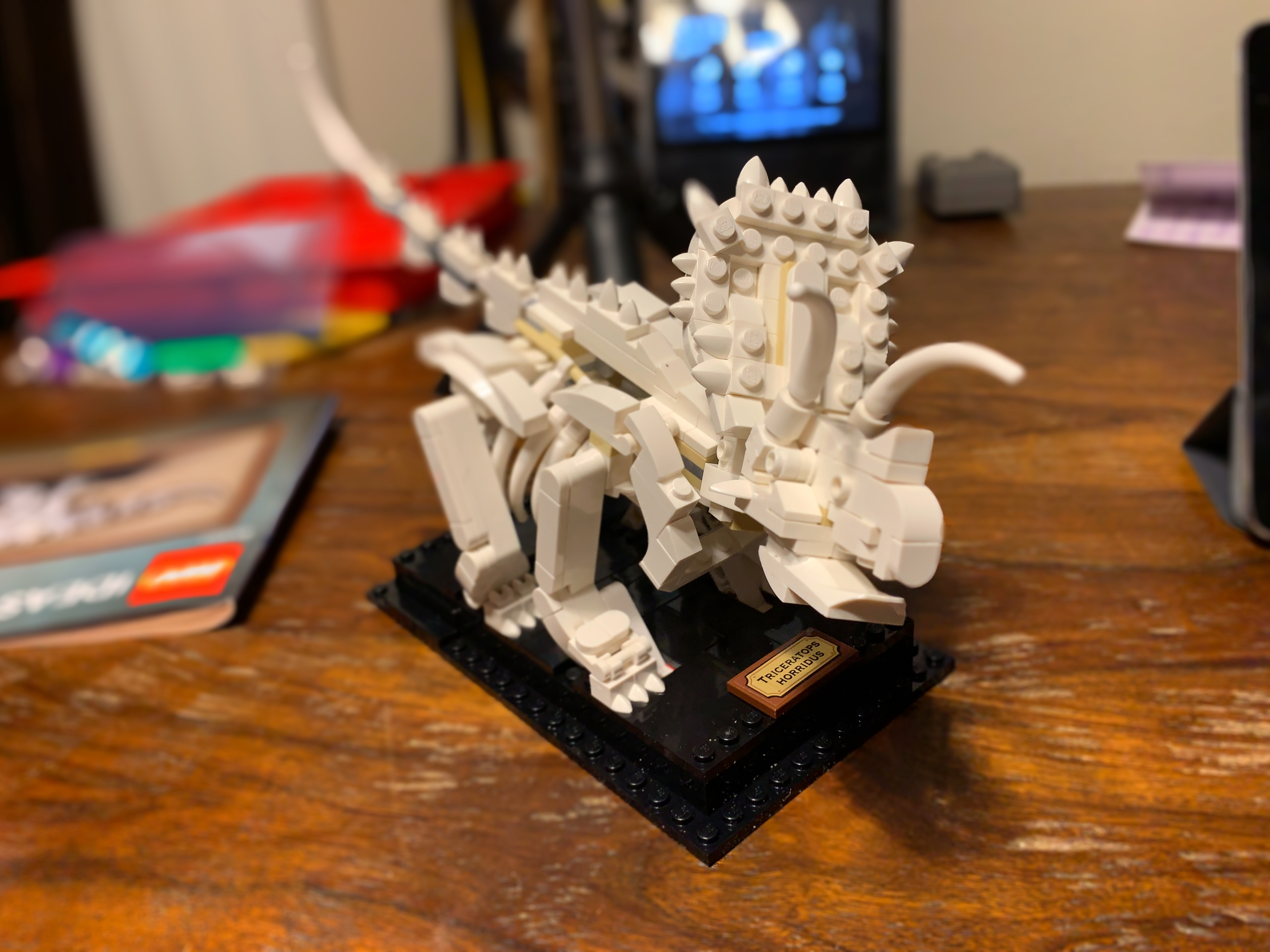 LEGO IDEAS 21320 Dinosaur Bones Builds 3